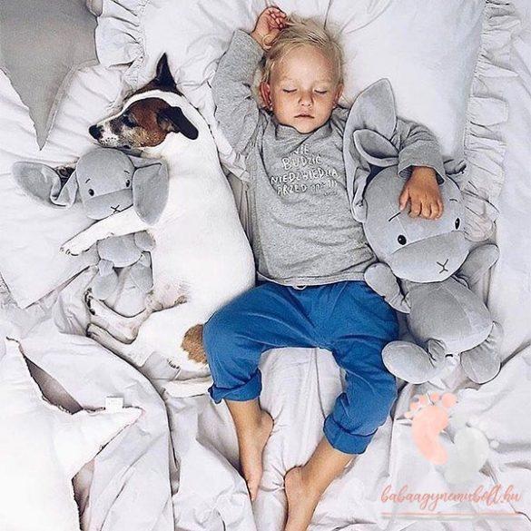 Kedvenc nyuszid - Maximilian 50cm